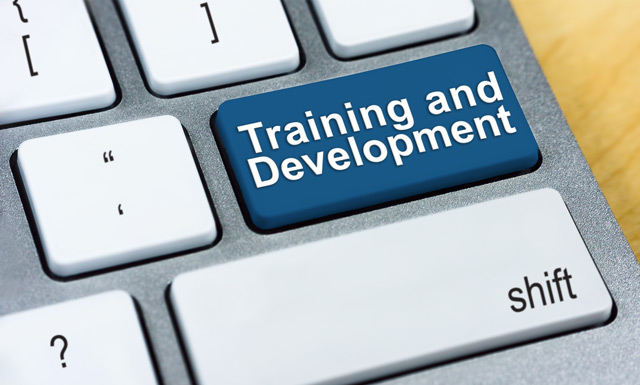 Career Development and Training